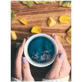 クジラinコーヒーカップ、海、イルカ
