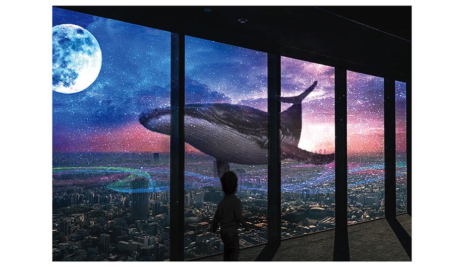 My Own World、クジラ、空、月、キレイ、海、イルカ
