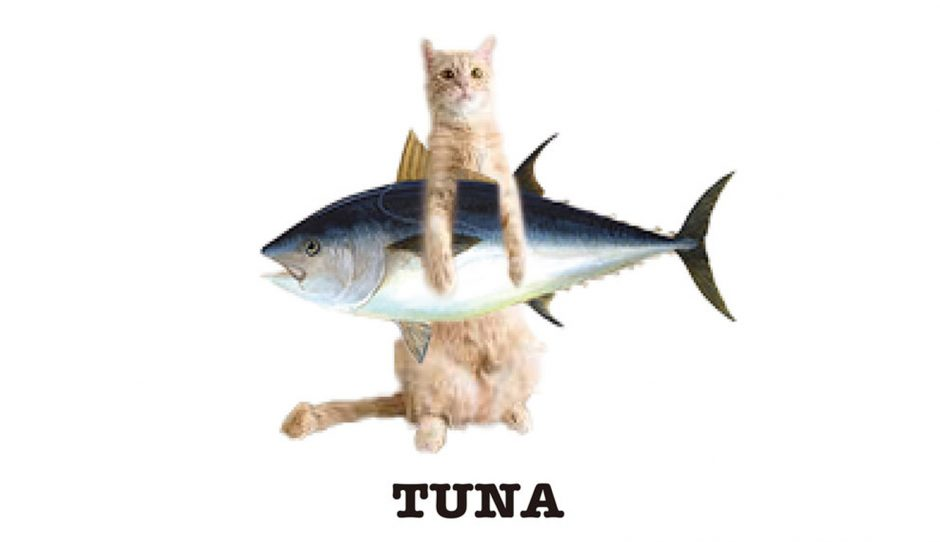 お魚抱えた猫